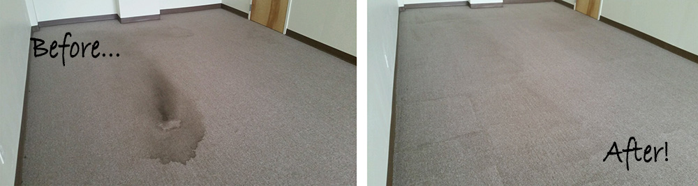 BeforeAfter_Carpet Steam Cleaning